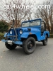 1954 M38A1 - all original - driving and ready to go